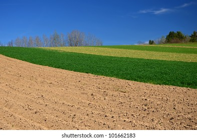 Rural landscape in countryside of Beskid Niski, Poland