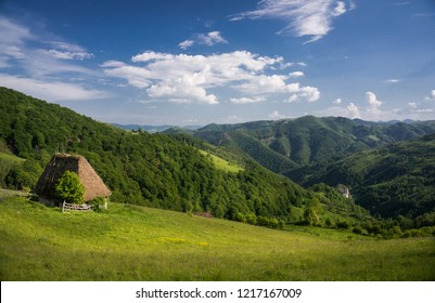 Rural landscape in the countryside hills of Transylvania, Romania in spring, with small isolated cottage with cane roof and yellow flowers. Ecotourism