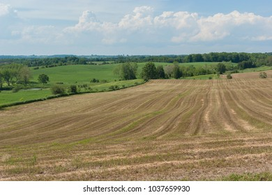 Rural landscape: cultivated  field with harvesting crop. Ontario, Canada