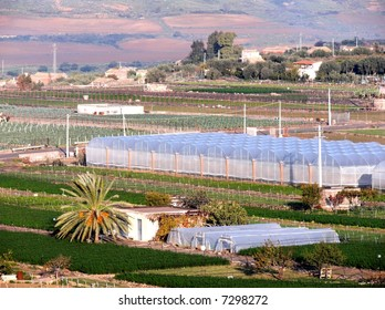 Rural landscape with cultivation in greenhouse