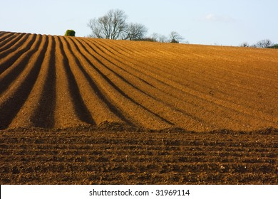 Rural landscape depicting the wonderful vanishing point patterns of a ploughed field