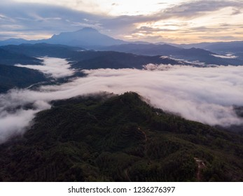 Rural landscape with dramatic sea of cloud during sunrise with Mount Kinabalu at Saba, Borneo