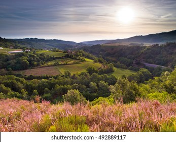 Rural Landscape in the early Morning in the Ardeche, France