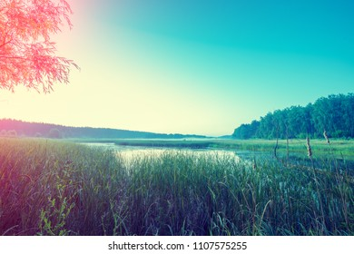 Rural landscape in early morning. Wilderness, wild lake