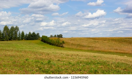Rural landscape at the end of summer with a mowed grass and uncultivated meadow, trees in the distance. beautiful skies with white clouds.