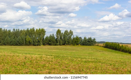 Rural landscape at the end of summer with a mowed grass and uncultivated meadow, trees in the distance. beautiful skies with white clouds