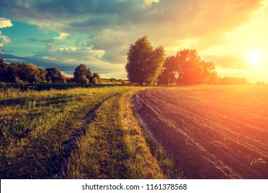 Rural landscape in evening at sunset. Dirt road amoung arable field
