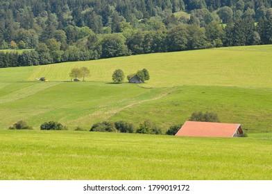 Paisaje rural con tierras de cultivo alrededor de Fussen