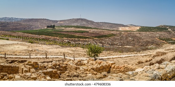 Rural landscape, farmland of settlement Shilo, the panoramic view from the archaeological park of Shiloh in Samaria, Israel