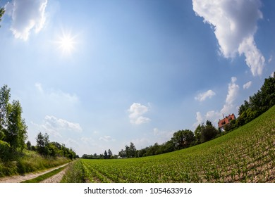 rural landscape with field and blue sky with fisheye