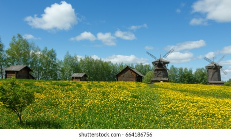 Rural landscape with field of dandelions and windmills.