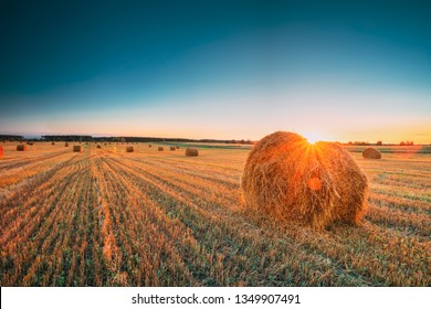 Rural Landscape Field Meadow With Hay Bales During Sunny Evening In Late Summer. Hay Stacks In Sunlight At Summer Sunrise. Bright Sun At Horizon. Harvest Time