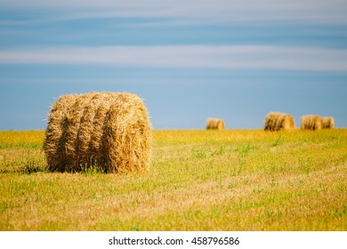 Rural Landscape Field Meadow With Hay Bales After Harvest In Sunny Day In Late Summer. Blue Sky.