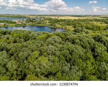 Rural landscape with forest and ponds in Russia, top view