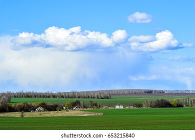 Rural landscape with a green field, clouds and farm.