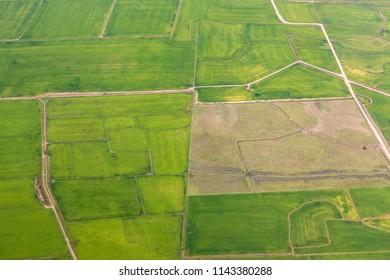 rural landscape with green fields near Porto Allegre in Brazil