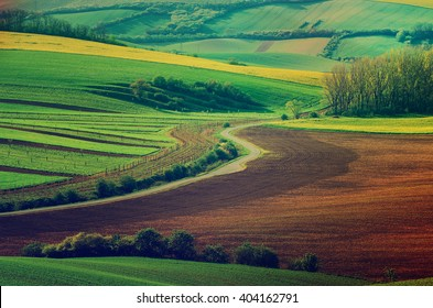 Rural landscape with green fields, road and waves, South Moravia, Czech Republic - natural seasonal retro hipster image