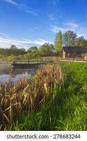 Rural landscape with a lake and reeds