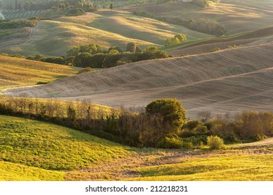 Rural landscape in the light of the sunset