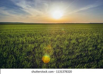 Rural landscape near Rabensburg village in Austria