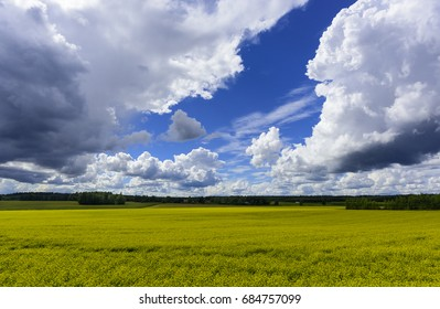 Rural landscape on cloudy day