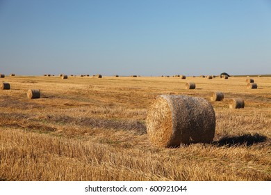 Rural landscape over farm field with hay bales.