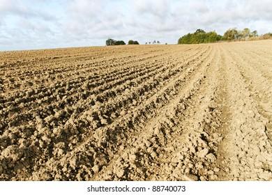 Rural landscape with plowed field.