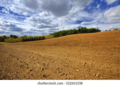 Rural landscape, Plowed field after the harvest in the autumn