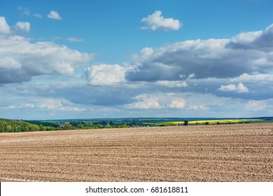 Rural landscape - plowed field and forest with blue sky and clouds over them.