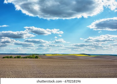 Rural landscape - plowed field, rape, meadows and forest with blue sky and clouds over them.