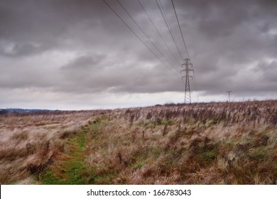 rural landscape with power lines