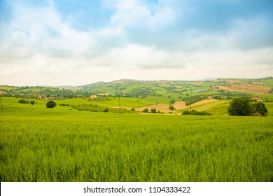 Rural Landscape at summer fields in Italian province of Ancona in Italy