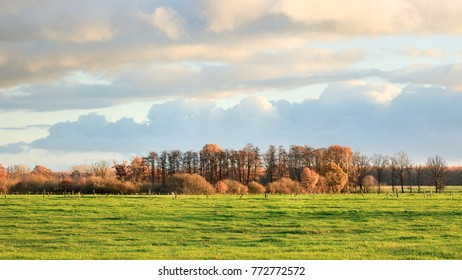 Rural landscape with trees in autumn colors, Turnhout, Belgium
