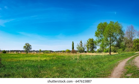 Rural landscape under blue sky in Irpin, Ukraine. Green meadow with young grass, single trees in the field and path to forest under sun beam