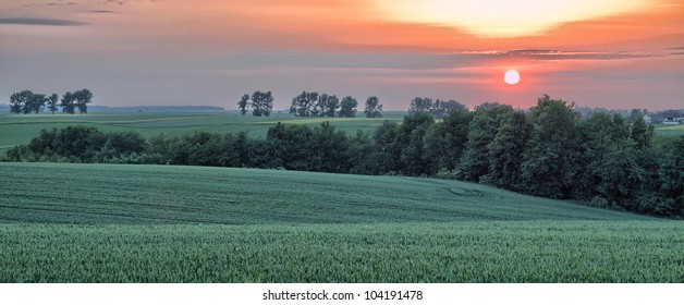 Rural landscape with wheat field on sunset. HDR