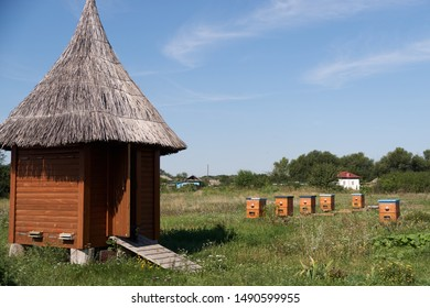 Rural landscape of wooden cabin with straw roof and beehives, clustered on farm field among lush greenery, and village houses hidden in bushes against clear blue sky on background.