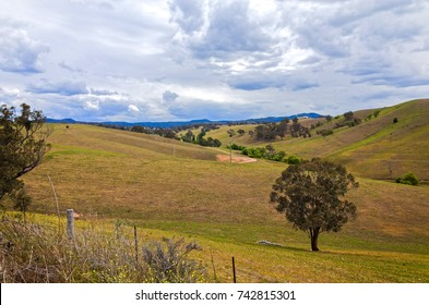 Rural mountain landscape with fields, trees, low hills. Scenic valley on farmland at Central Tablelands near Cox's River in the Blue Mountains and Macarthur regions of New South Wales, Australia.