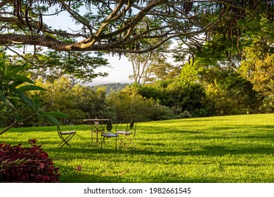 Rural outdoor lush green garden setting, ideal as spacious, relaxing, outdoor, garden related ambiance backdrops with advertising copyspace.