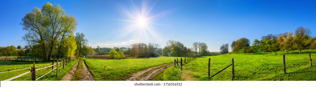 Rural panoramic landscape in friendly happy colors, with the sun shining in the clear blue sky and dirt roads leading through vibrant green meadows