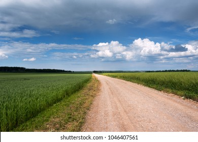 Rural road in countryside, Latvia.