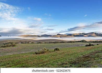 A rural road, farmhouse, on top of the hill shrouded, in a layer of fog at sunrise, with blue sky, white clouds & gentle rolling hills in the background. Photographed on the California Central Coast
