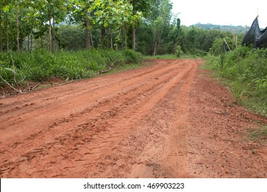 Rural road on countryside in Thailand.