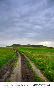 Rural road on green field.