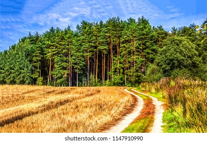Rural road to pine forest landscape. Pine tree forest road view. Pine forest road panorama