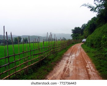 Rural road in raining have green natural both side and only one car in far a way