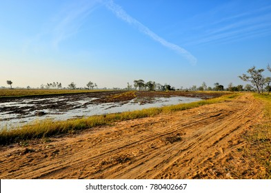 Rural road in Thailand It's a dirt road. Two sides of road is rice field after harvest.