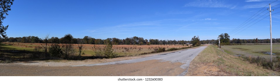 Rural road through farmland in Mississippi