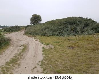 Rural sandy road in the village