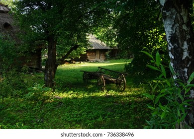 Rural scene with horse cart in the center. Rural Poland