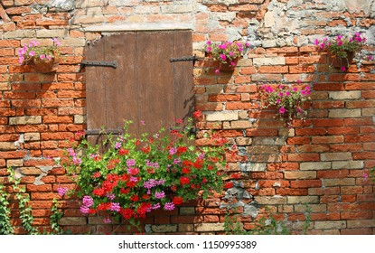 rural scene with pot of geraniums flowers and wall with red bricks and wooden window